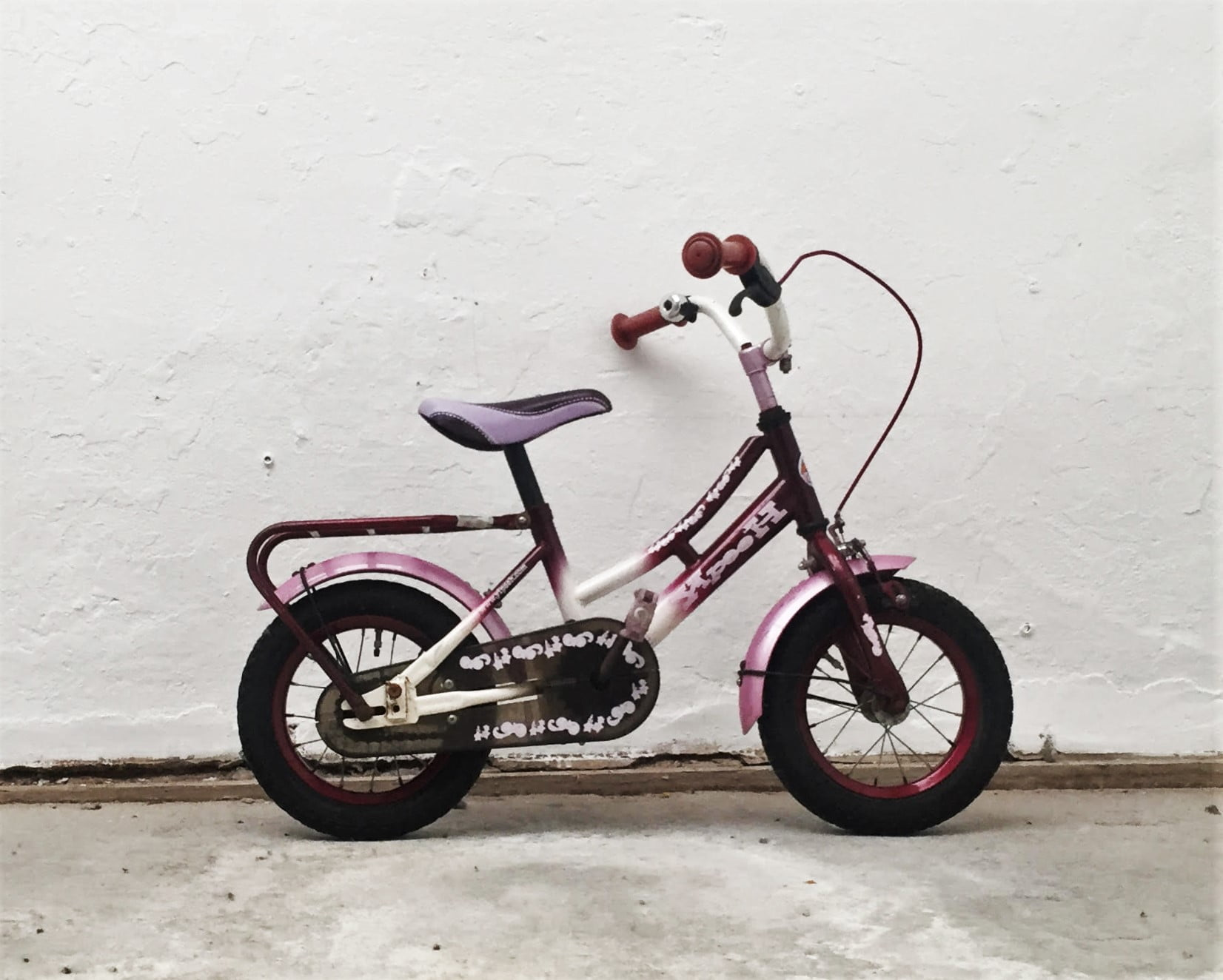 Stoere paarse fiets • 12.3