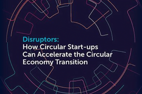 The circular start-up as a kick-starter for the establishment