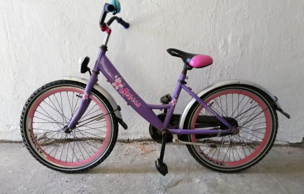 Roze fiets • 22.6