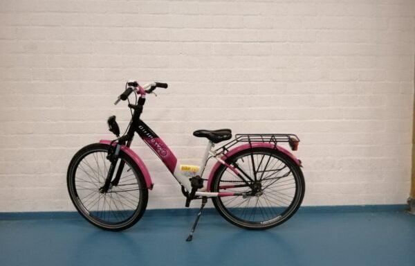 Roze Alpina on fleek • 24.12