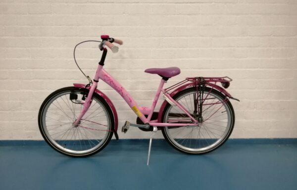 Deftige roze fiets • 24.15